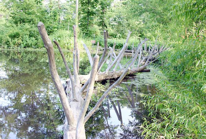 Treemendous Tree Bridge
