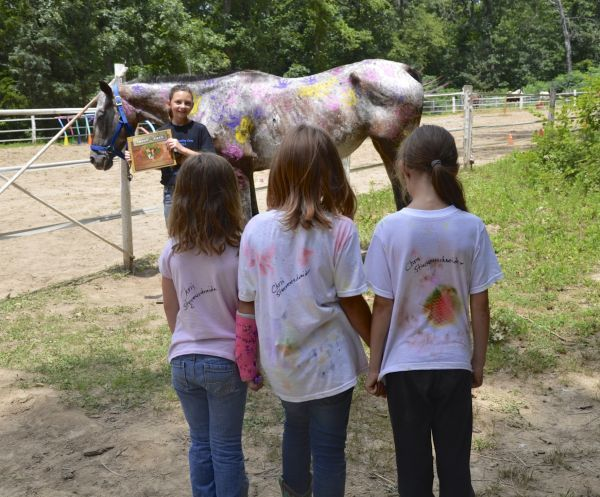 """DD from """"Twist of Fate, the Miracle Colt and His Friends,"""" Visited by Admimers"""