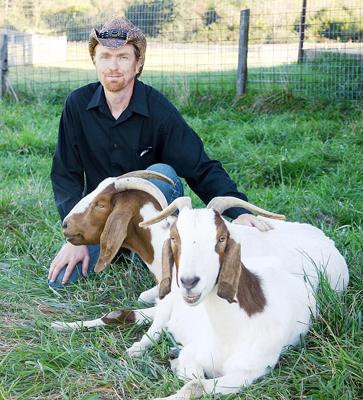 Starts Goat Grazing Business