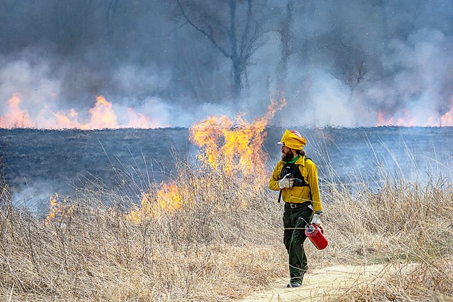 Shaw Nature Reserve Prescribed Burn