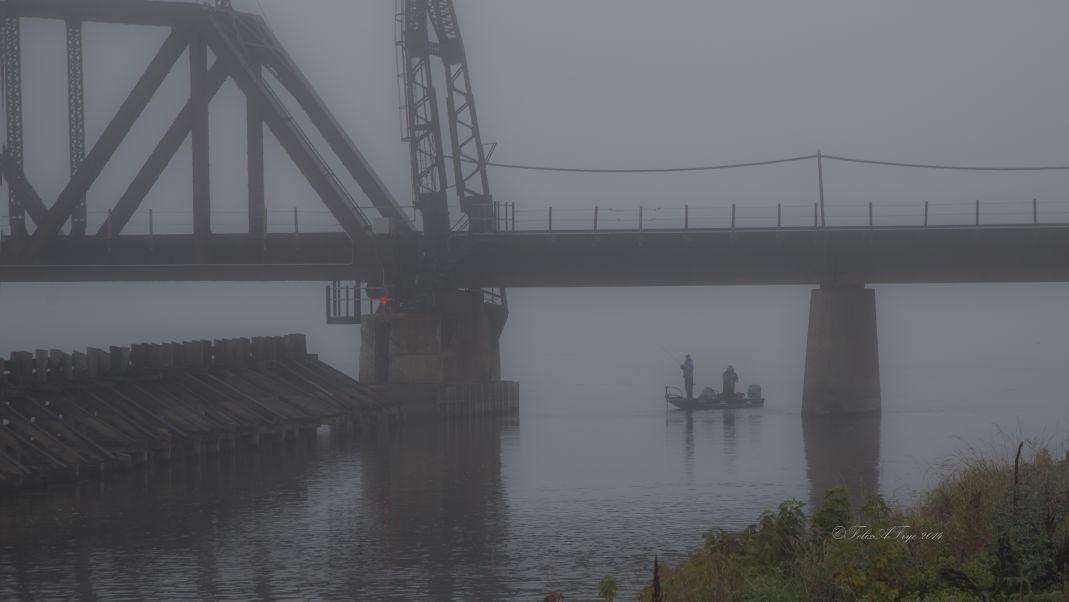 Mississippi River Fod