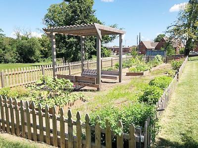 St. Clair Community Garden