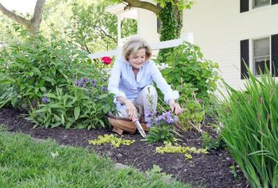 Gardening Is Good for Mind, Body and Soul