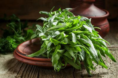 ONE GARDENER TO ANOTHER: Tarragon is magnifique