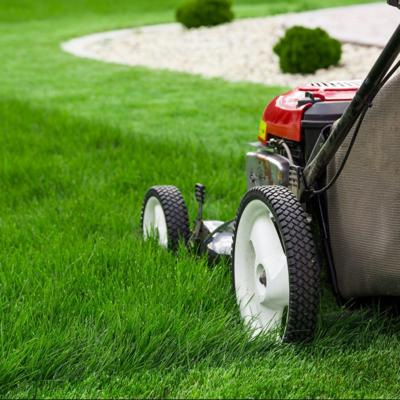 ONE GARDENER TO ANOTHER: Don't get mowed over with a dull blade