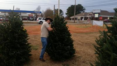 boy scout christmas tree lot - Boy Scout Christmas Trees