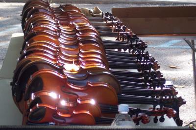 Fiddles on display