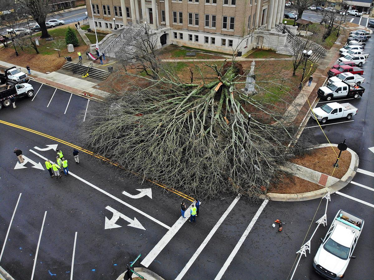 Aerial Courthouse tree down