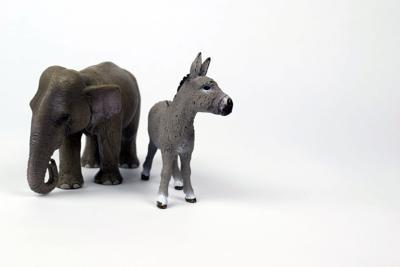 Democrat Republican donkey elephant stock photo