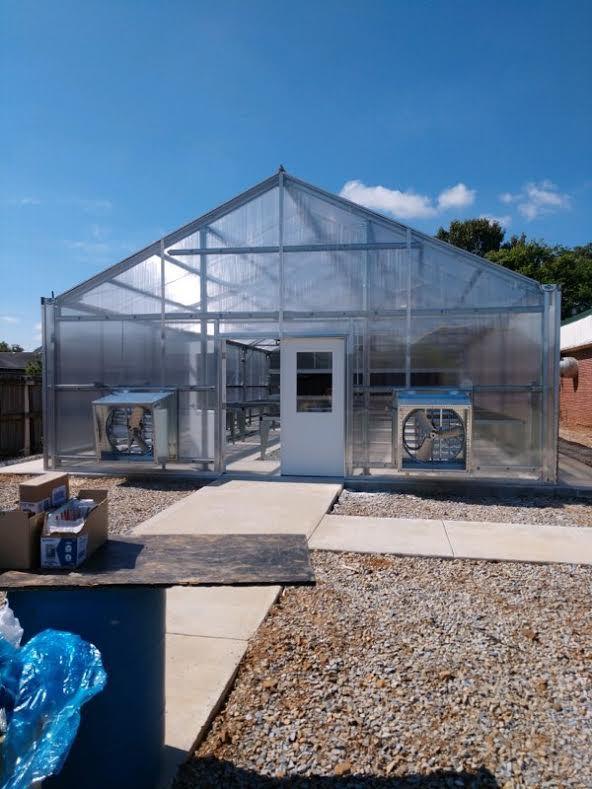 Tanner greenhouse 2.jpg