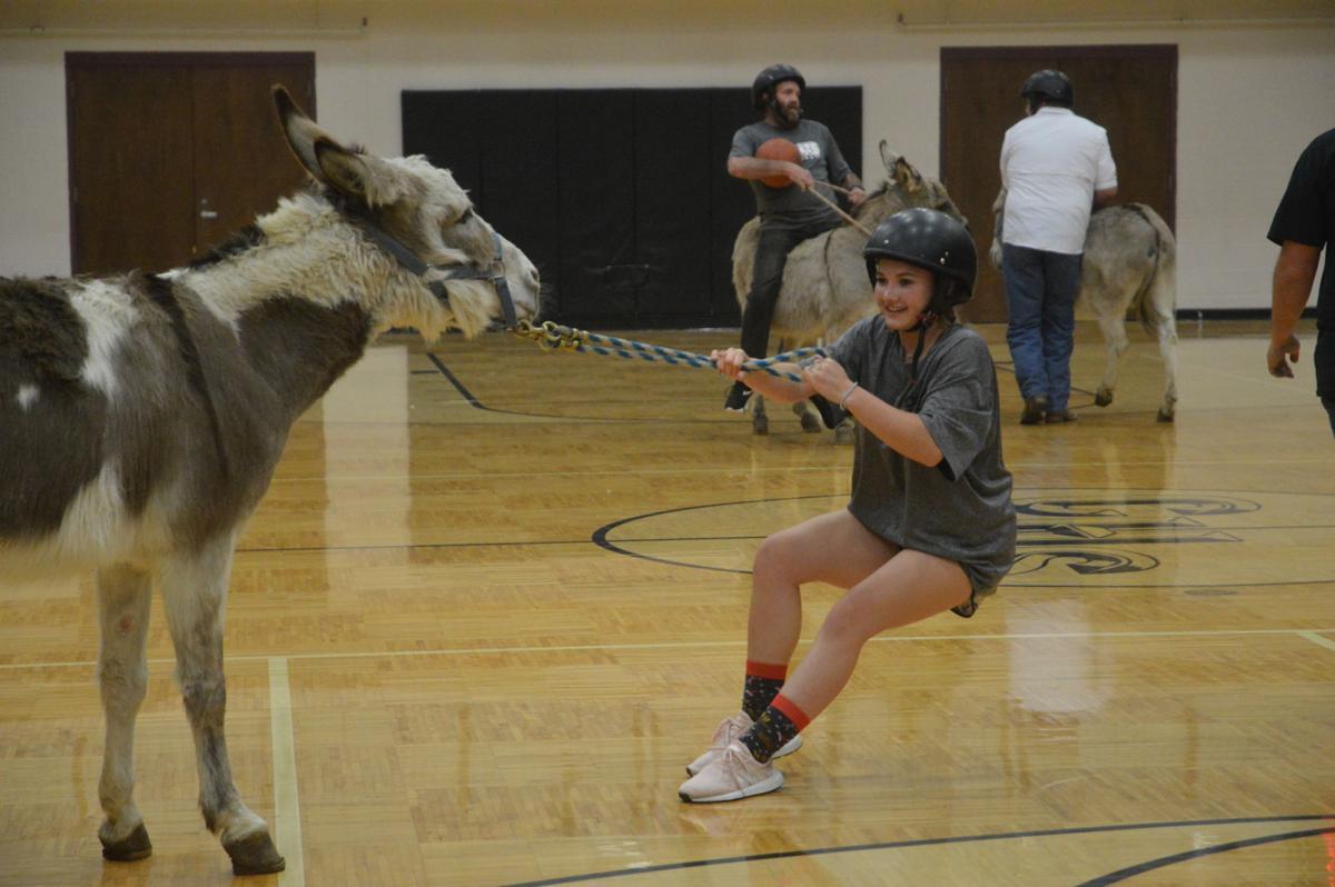 Donkey Basketball Game