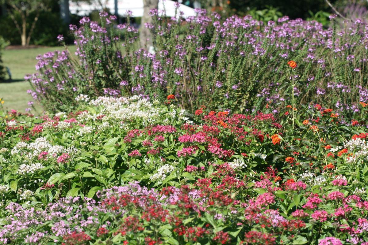 the garden spot gardening trends in 2018 - Garden Spot