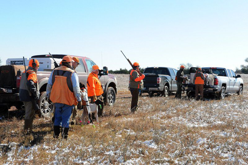 53rd Grand National Quail Hunt nears