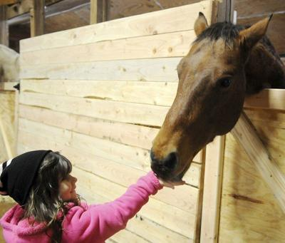 Bennie's Barn seeking public help to fill $50K fundraising gap