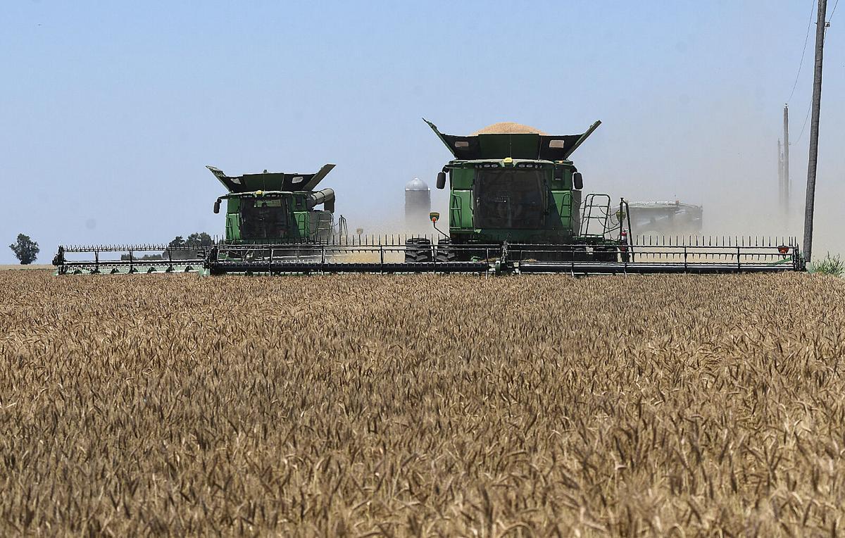 210914-news-harvest 2 BH.jpg
