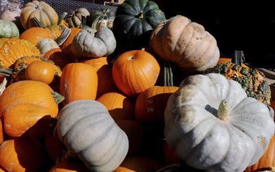 Pumpkins, art and Oktoberfest