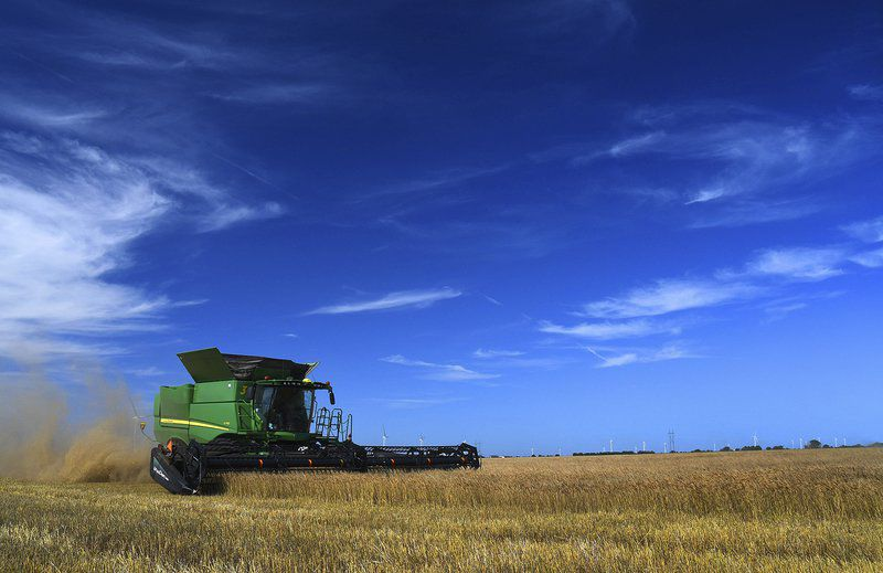 Oklahoma wheat harvest yields above average