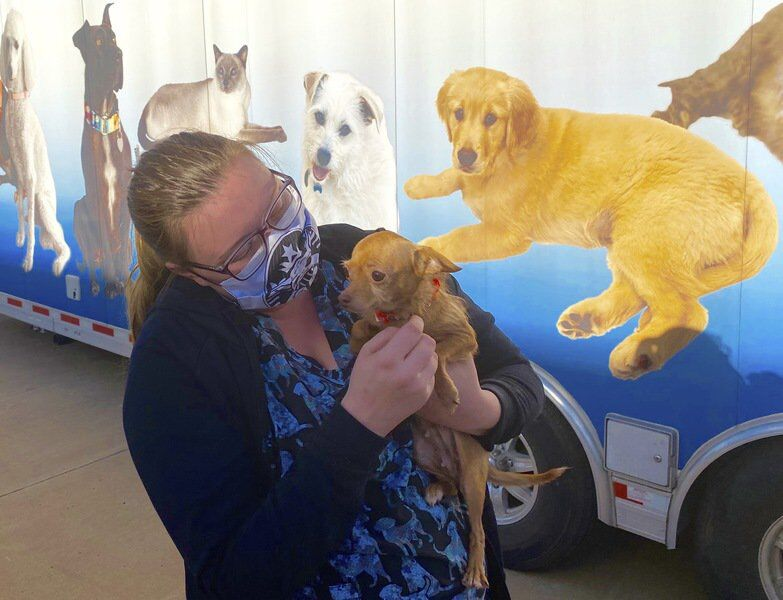 Enid SPCA, American Humane team up to send 23 dogs to Colorado