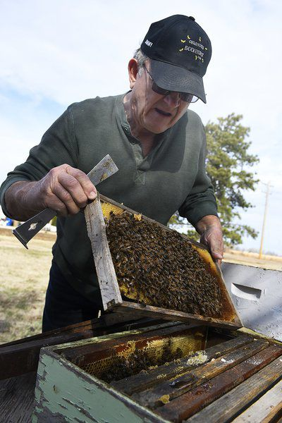Fall beekeepers meeting set for Oct. 5