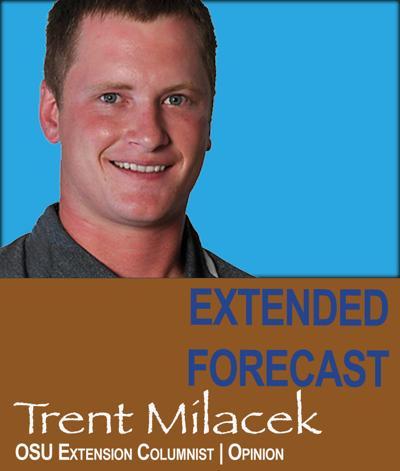 Trent Milacek (column mug)ENE