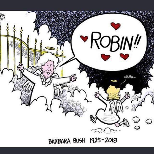 Image result for robin bush political cartoon