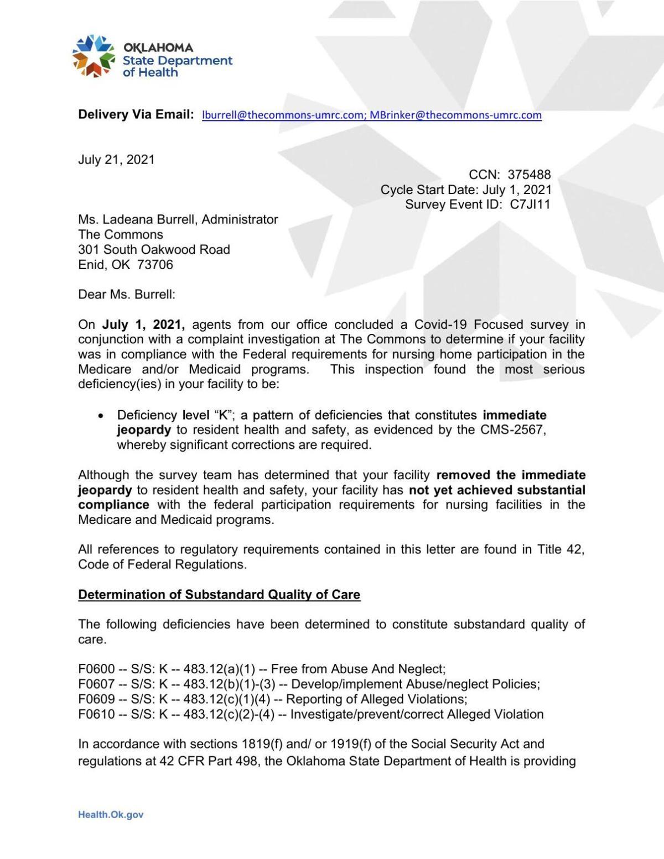 Commons Survey PDF