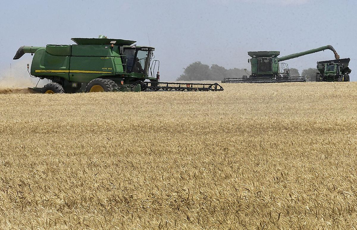 210404-progress-crops 9 BH.jpg