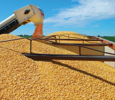 Corn loading