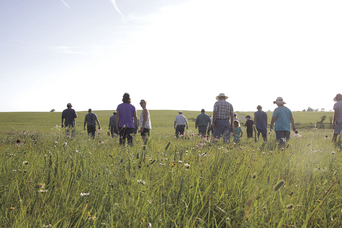 Anderson County Wildflower and Pasture Tour