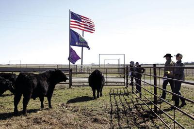 Dalebanks Ranch Gathering