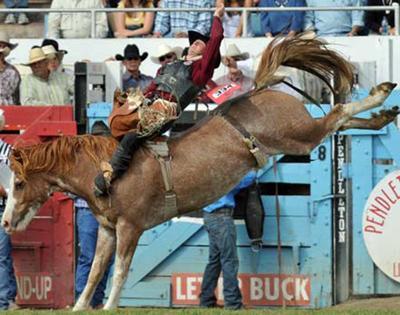 99 rodeos take Kansas cowboy to Vegas | News