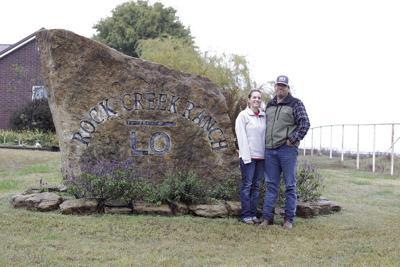 Rock Creek Brangus