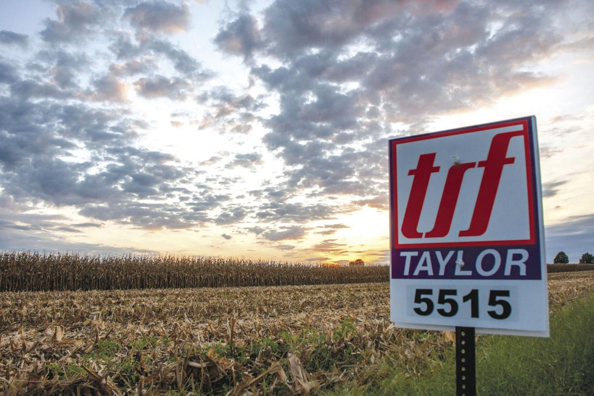 Taylor Seed Farms