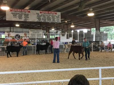 Labette County Fair