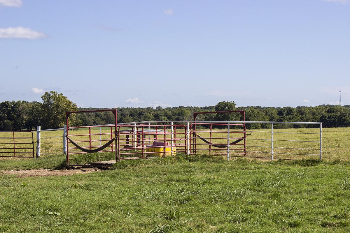 Barry County Cattle Tour
