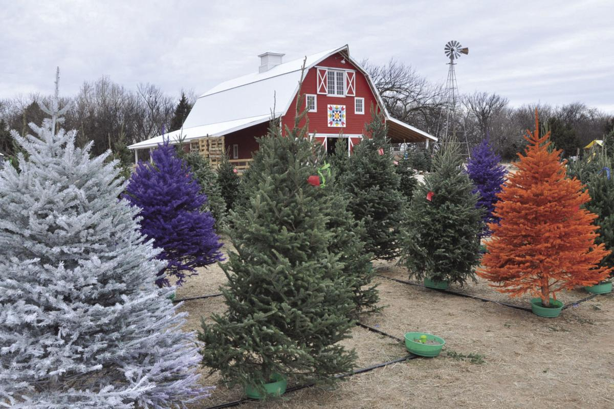 Red Bird Tree Farm