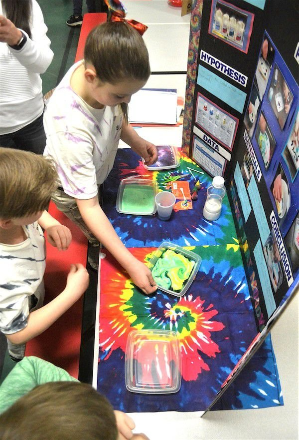 County S Best Science Projects Recognized News