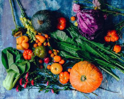 Summer session of Fort Bend Regional Vegetable Conference slated for July 29