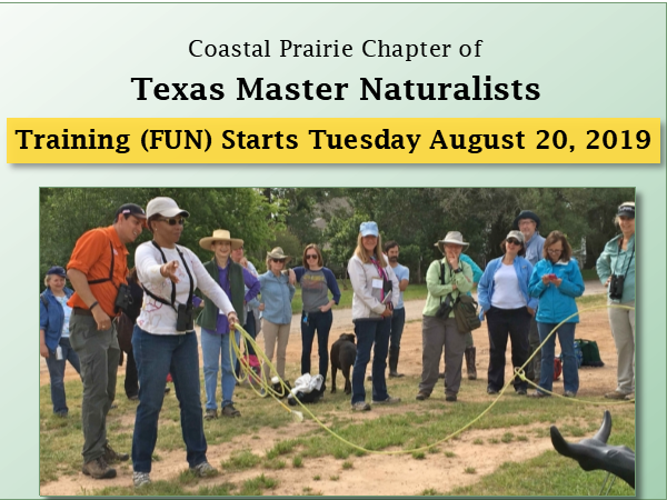 Master Naturalist training class having fun on the Katy Prairie