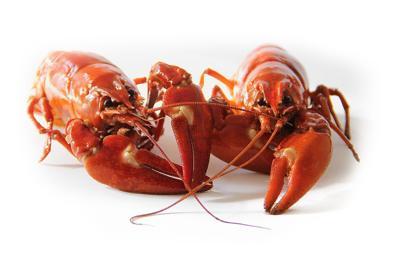 Fair crawfish boil benefit is April 12