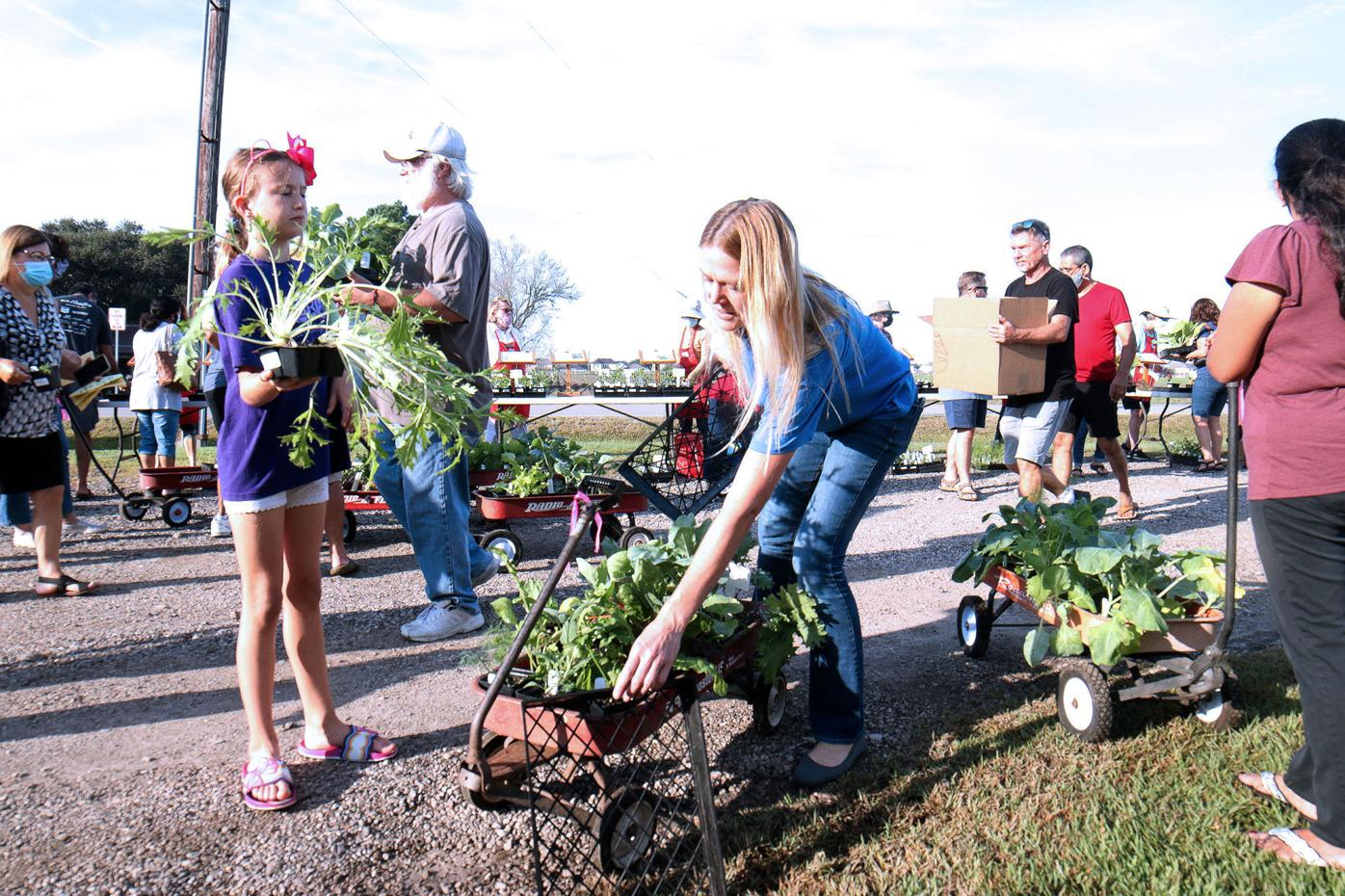 2021 Herb & Vegetable Plant Sale