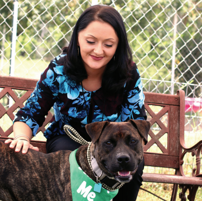 Animal shelter needs more foster parents