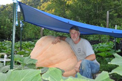 Slone has been growing giant pumpkins since 2008