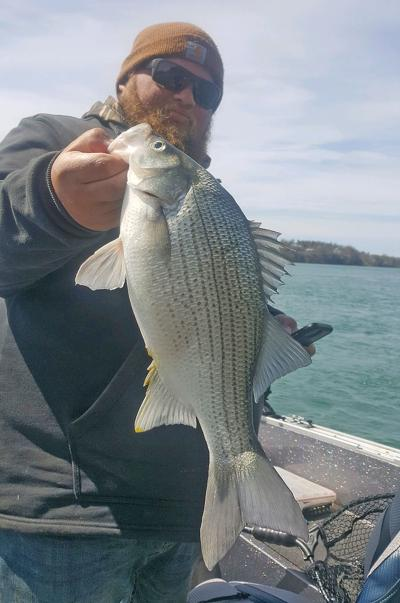 State-record white bass