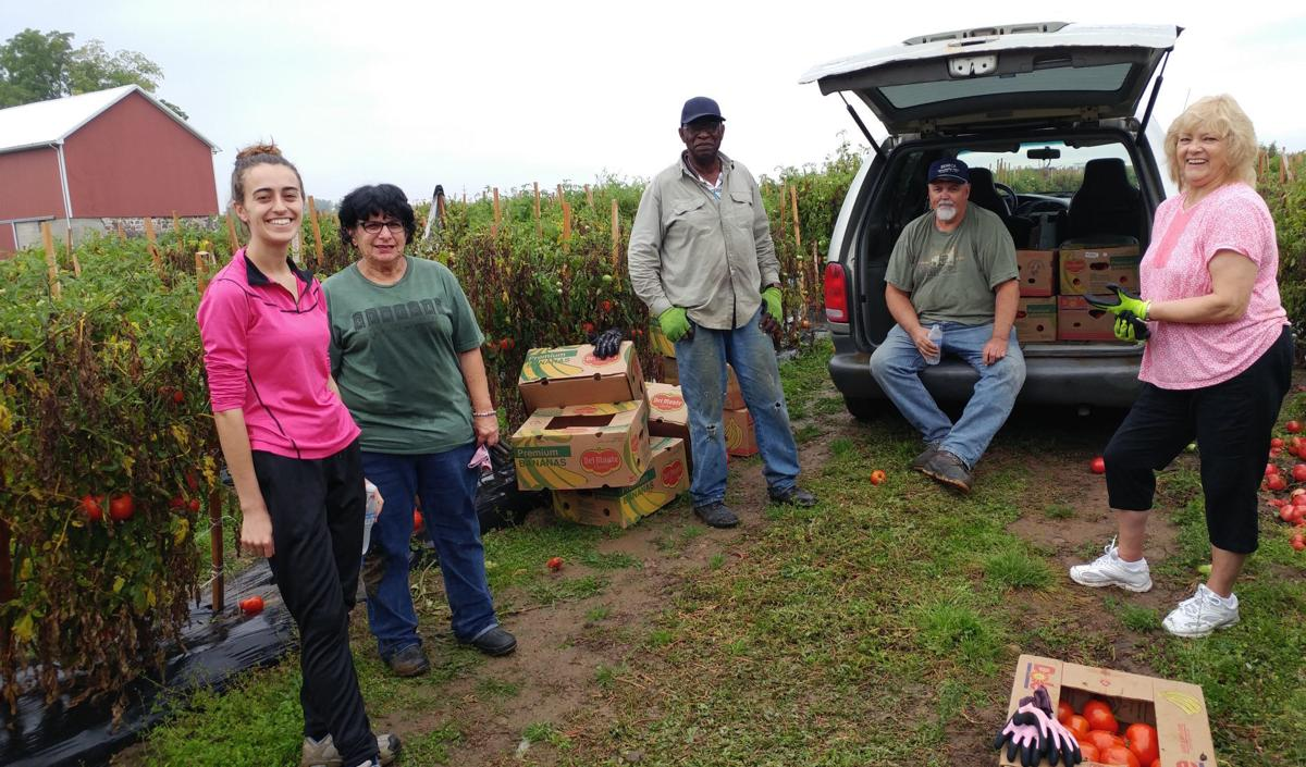 Food justice in fields