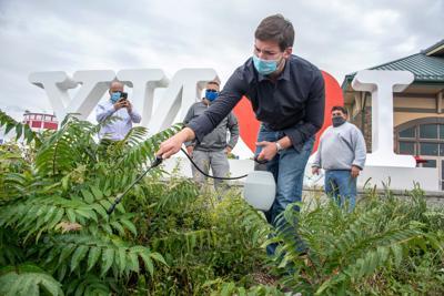Organic spraying