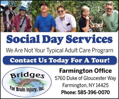 Bridges For Brain Injury AD