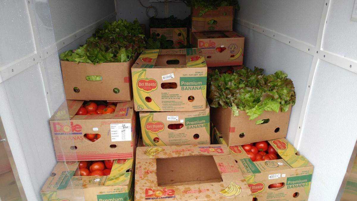 Food justice collections