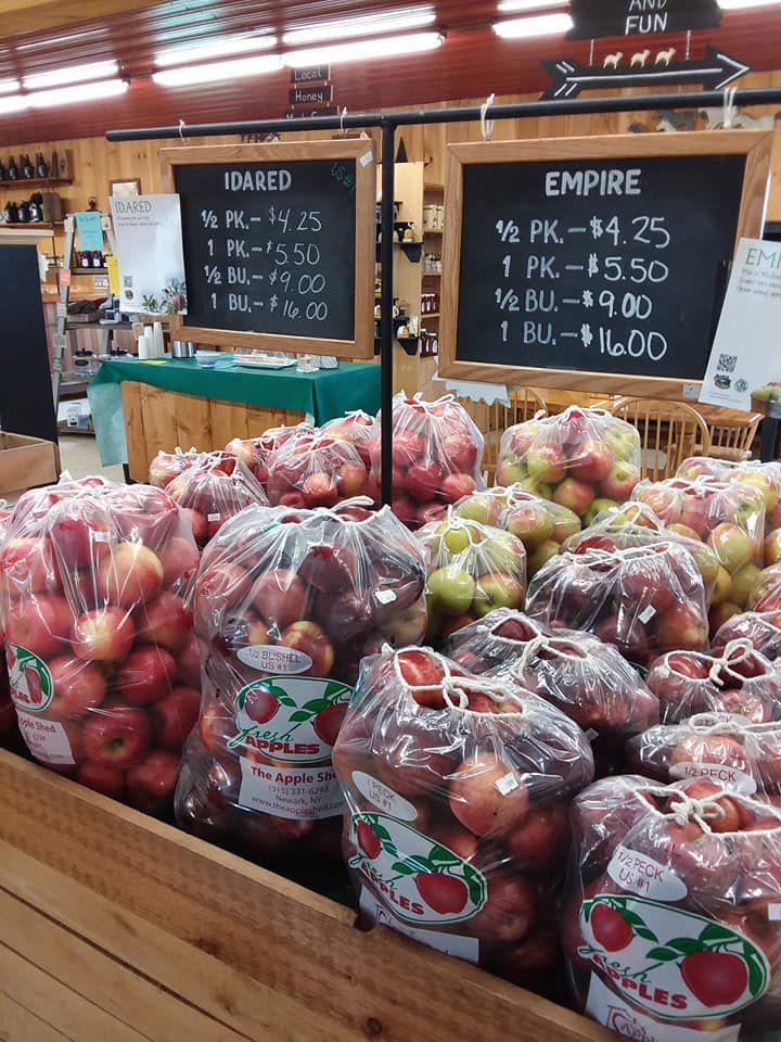 Apple shed apples