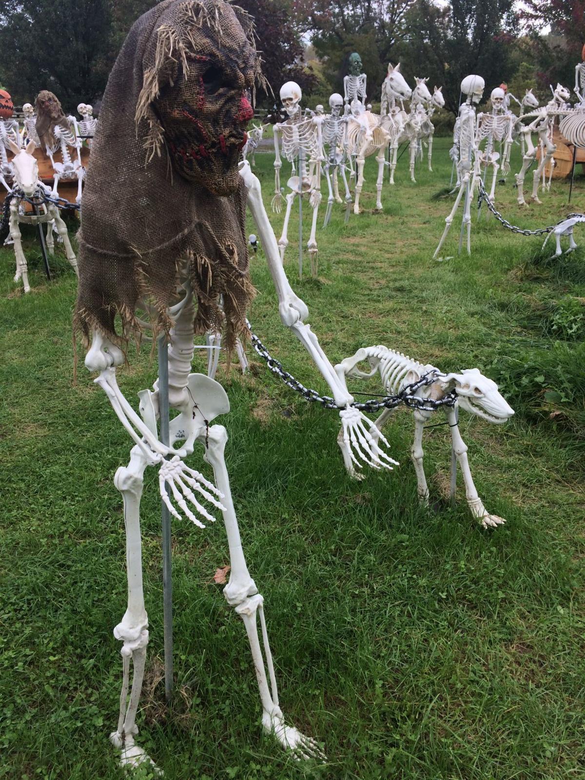 Hopewell Halloween display
